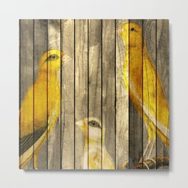 Canaries on Wood Metal Print