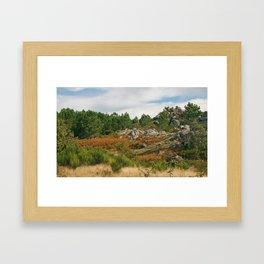 Fallish Framed Art Print