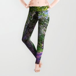 Magical Forest Trail Leggings