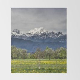 Green field with snowy alps Throw Blanket