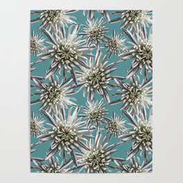 Mum Floral Pattern - Mum's the word - Auqa and White Floral Design - White Mum Flowers - I Love my M Poster