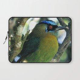 Costa Rican Treasure: The Mot Mot Bird Laptop Sleeve
