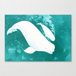 Beluga Baby Canvas Print
