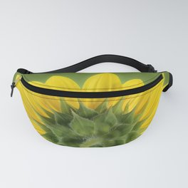 Sunflower Sunrise - Botanical Art by Debi Dalio Fanny Pack