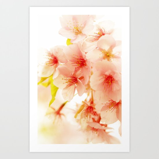 BLOSSOM OF PINK Art Print