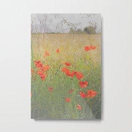 A Splash of red  Metal Print