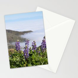 Catalina Lupines Stationery Cards