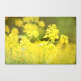Floral Page Canvas Print