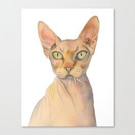 Sphynx Cat Watercolor Portrait Canvas Print