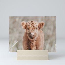 Scottish Highlander Portrait Art Print | Animal Photography | Scottish Highland Cow Baby Calf Mini Art Print