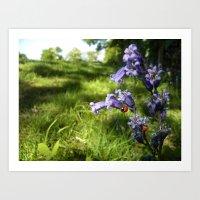 Ladybug loves bluebells Art Print