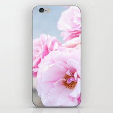 Blushing Roses iPhone Skin