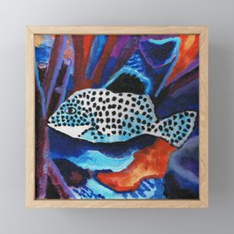 Tropical spotted fish Framed Mini Art Print