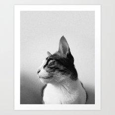 Thats my Cat !! 05 Art Print