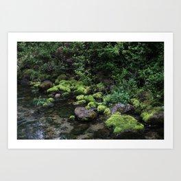 Mossy River Walk Art Print