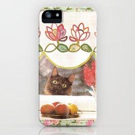 Food Plz handcut collage iPhone Case