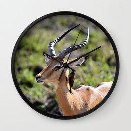 Wildlife Gossip Wall Clock