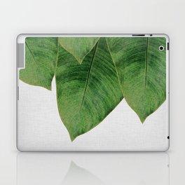 Banana Leaf III Laptop & iPad Skin