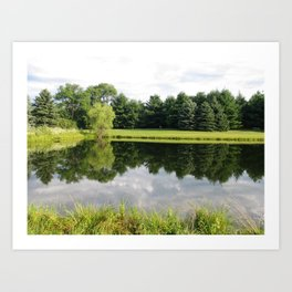 north side of pond Art Print