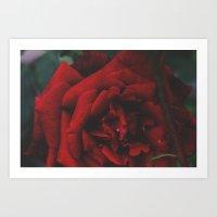 Flower 5 Art Print