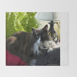 The Feline Queen Reposes (Gracie Queen of Chicago Collection) Throw Blanket