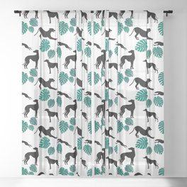 Greyt Greyhound Monstera on White Sheer Curtain