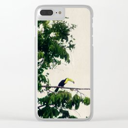 The Toucan Tree Clear iPhone Case