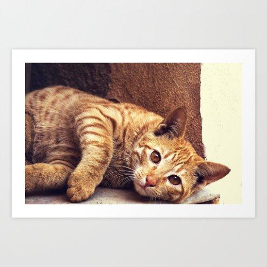 Cat roux Art Print