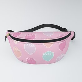 Poppy Seeds | Pink Palette Fanny Pack
