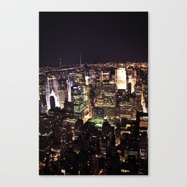 The View from up Here Canvas Print