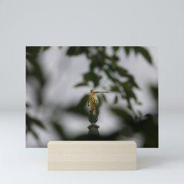 In Sight Mini Art Print
