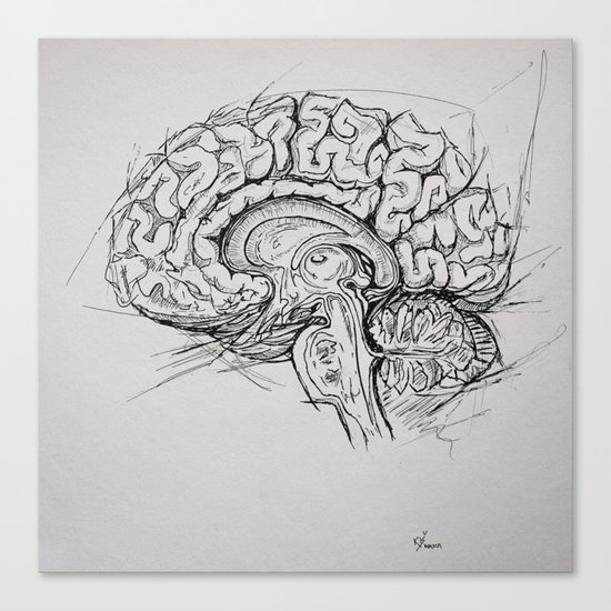 Brain Canvas Print