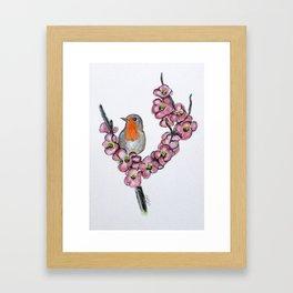 Robin And Peach Blossoms Framed Art Print