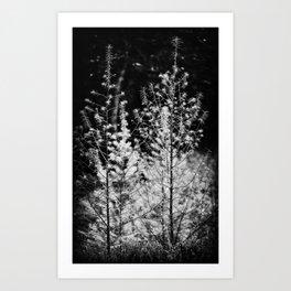 Contre-jour - 02 Art Print
