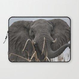 Elephant Along the Okavango River Laptop Sleeve