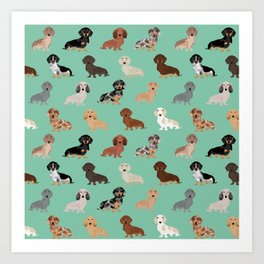 Dachshund dog breed pet pattern doxie coats dapple merle red black and tan Art Print