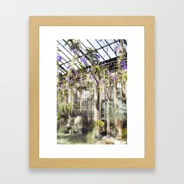 Orchids in the Air  //  The Botanical Series Framed Art Print