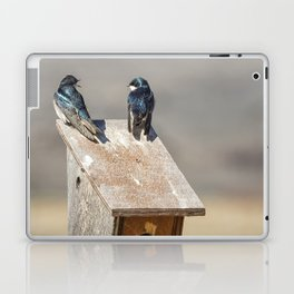 Two Tree Swallows Laptop & iPad Skin