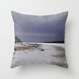 Pure Michigan Throw Pillow