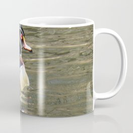 Wood Duck at Green Valley In Coffee Mug