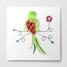 Bird of Costa Rica, quetzal Metal Print