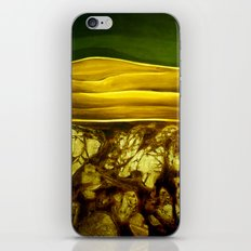 Hidden Landscape iPhone & iPod Skin