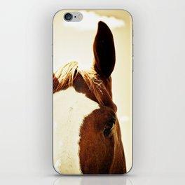 Quarter Horse Portrait iPhone Skin