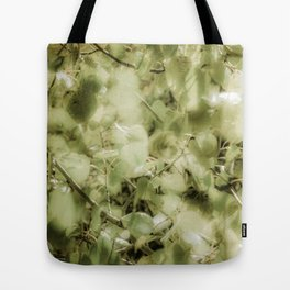 Colorado Aspens - Soft Green Tote Bag