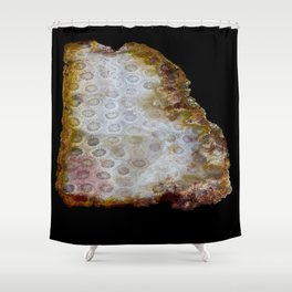 Indonesian Coral Shower Curtain