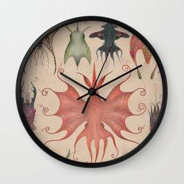 Cephalopodoptera Tab. V Wall Clock