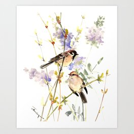 Sparrows and Spring Blossom Art Print