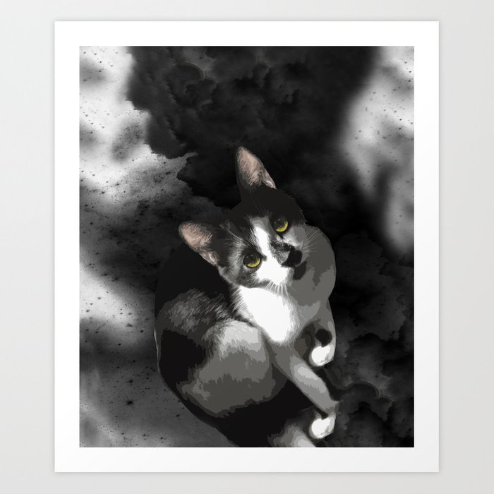 Gypsy Da Fleuky Cat and the Black Starry Night Art Print