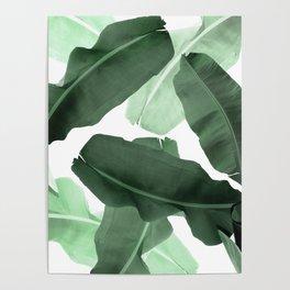 Green Banana Leaf Poster