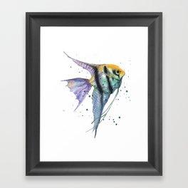 Angelfish, tropical fish, angel fish, animal art prints Framed Art Print